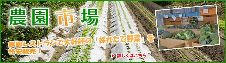 bn-nouen_ichiba_01